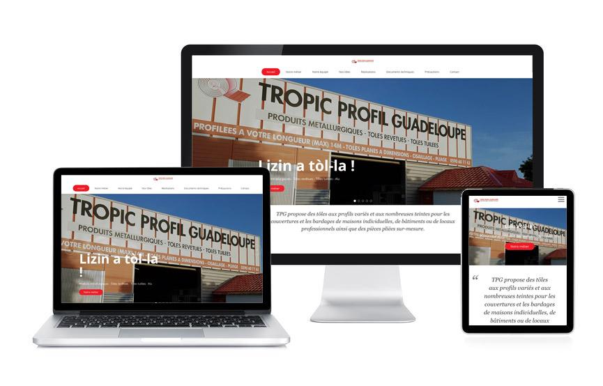 Site vitrine Wordpress de TPG Tropic Profil Guadeloupe réalisé par Jane Web